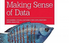 making sense of data